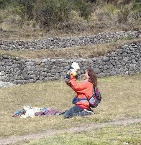 vale bimbo cuzco3