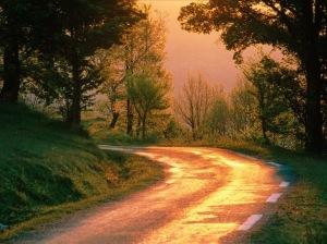 strada-nel-verde