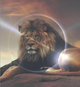 luna nuova in leone